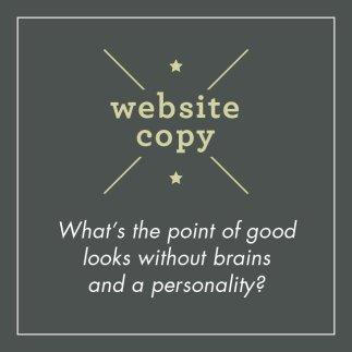Website Copy Graphic Panel